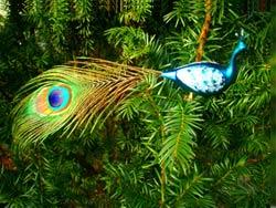 Paradiesvogel-Christbaumschmuck aus Thüringen