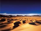 Jesaja 35, 3 – 10 Die Wüste wird blühen