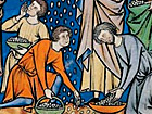 Exodus 16, 2 – 3. 10 - 18 Manna ist kein Gefriergut