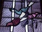 Pfauen - Ausschnitt aus Nordfenster