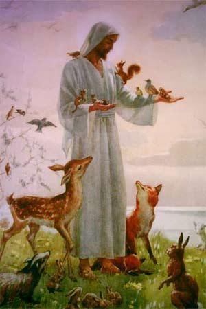 'The Lesser Bretheren' von Margaret Winifred Tarrant