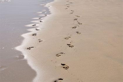 'beaches of Fuerteventura', 2012,Hansueli Krapf. Creative-Commons-Lizenz