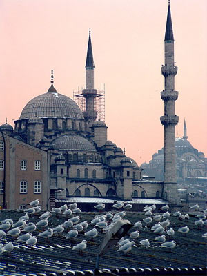 'Mosques at dusk in Istanbul with seagulls in foreground', 2003 - Christiaan Briggs