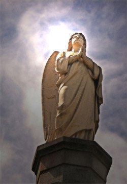 'Photo of a statue of an angel', Louise Docker from sydney, Australia', 2006
