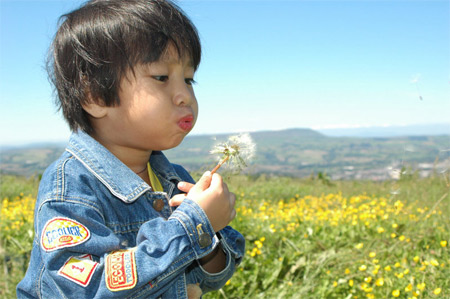 'A child blowing a dandelion clock', 2005, Maksim