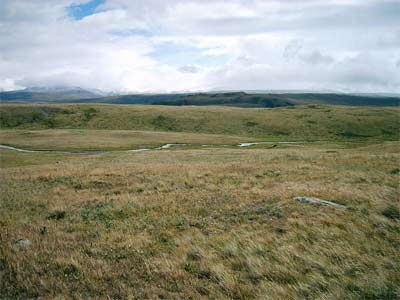 'Ukok Plateau', 2006, Kobsev