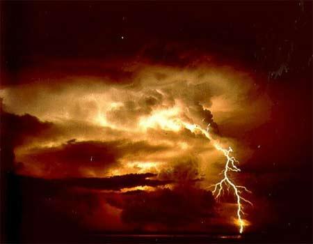 'Lightning', 2005, Saperaud
