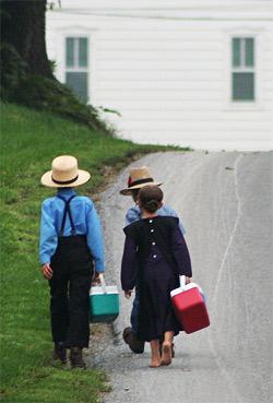 'Amish - On the way to school', Dutch School, gadjoboy, 2006