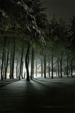 'Frozen light in a snow weekend MANZANEDA', 2008, Paulo Brandao