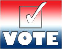 'Voting USA', Rich Legg, 2008