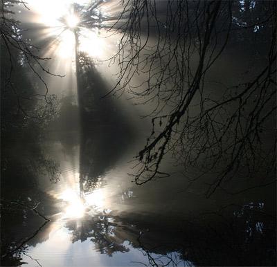 'Crepuscular Rays', 2008, Mila Zinkova