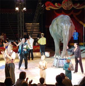 'Cirkus Merano, Norwegian Cirkus ', 2007, C. Hill
